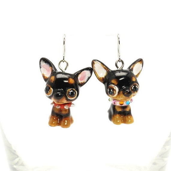 chihuahua products8