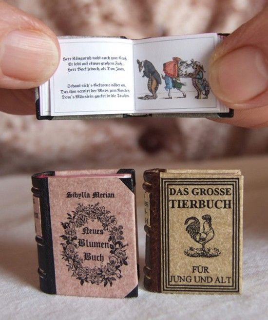 mini books33