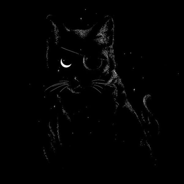 gatos10
