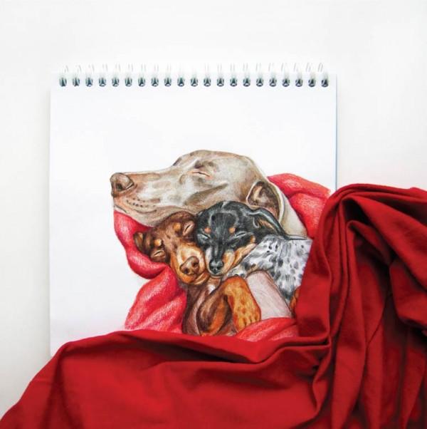 valerie-susik-cachorros-ilustrados10