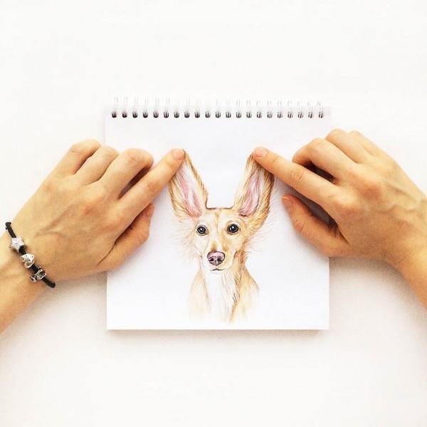 valerie-susik-cachorros-ilustrados11