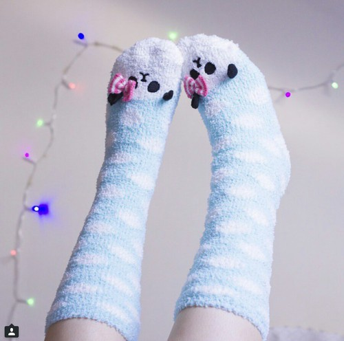 calcetas24