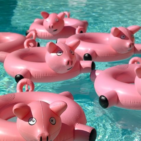 pool floats12