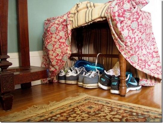 shoes organizer14