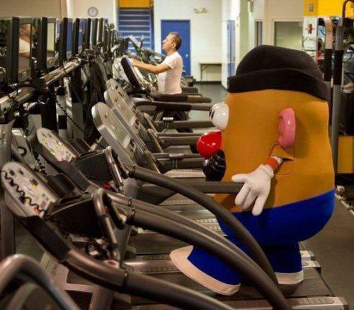 botarga gym