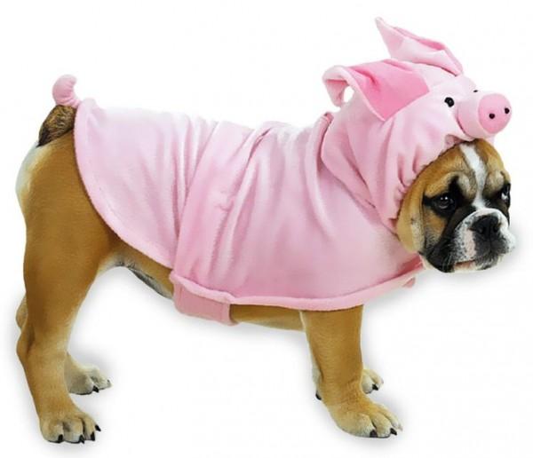 disfraz para perro puerco