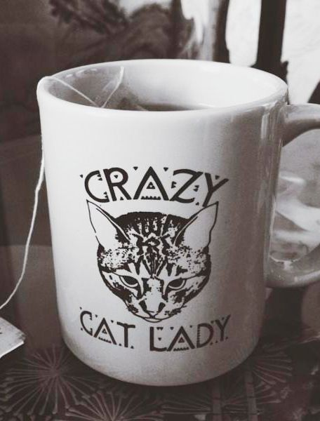 lady cats