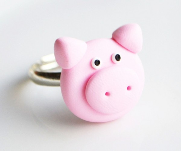 mini pig products12