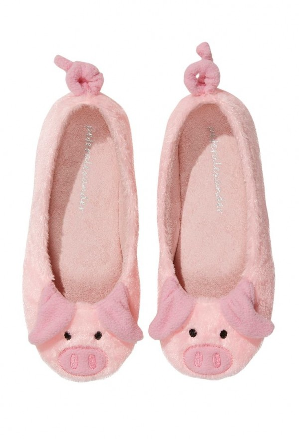 mini pig products17