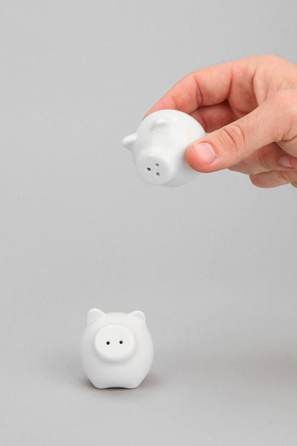 mini pig products4