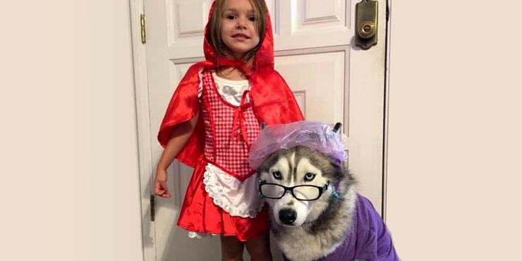 20 Encantadores Disfraces Para Tu Beb Y Tu Perro