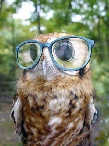 lentes enormes
