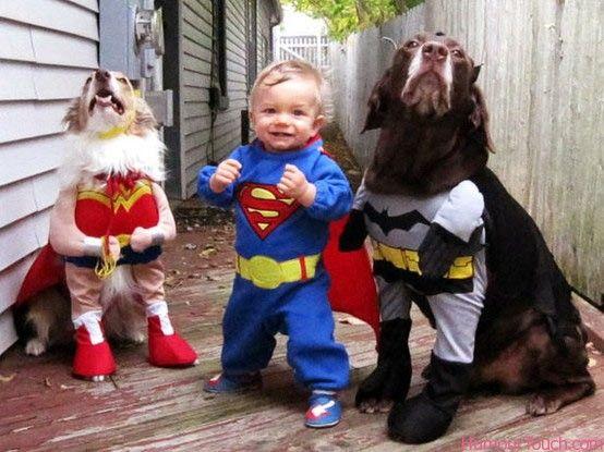 perro y bebe disfraz superhore