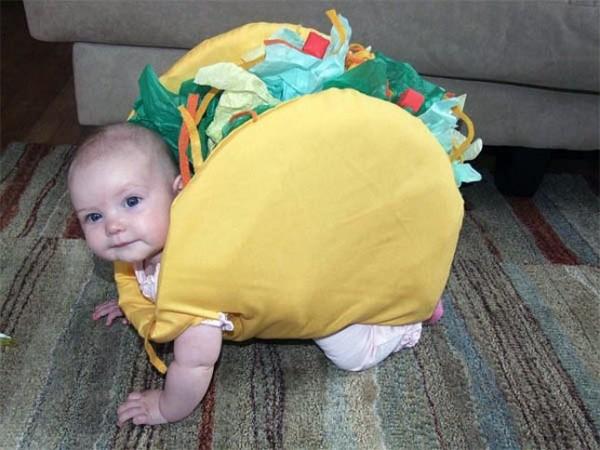 taco bebe