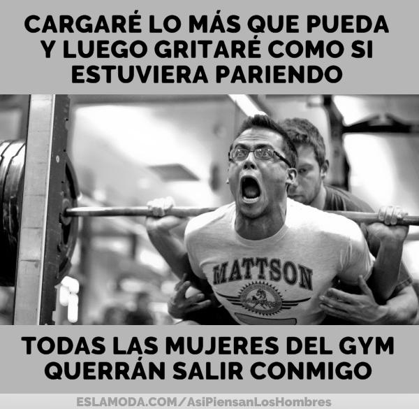 todas-las-mujeres-del-gym