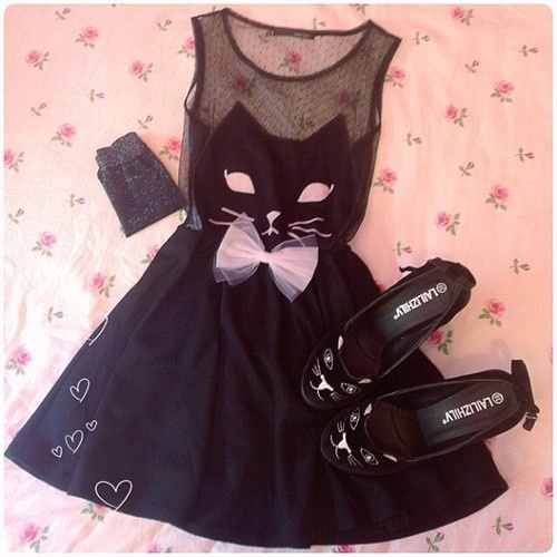 vestido gato