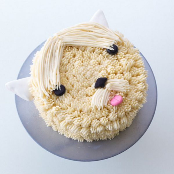 perro pastel