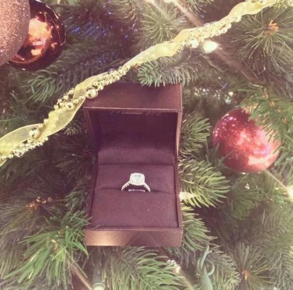anillo en el arbol