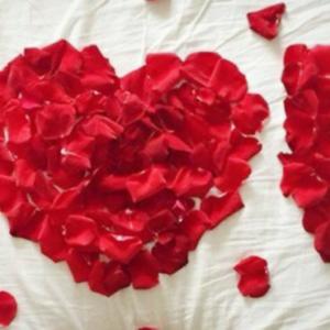 i-love-you-rosas