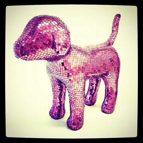 perro pink