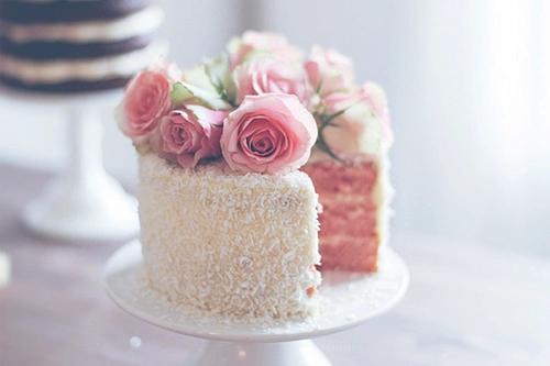 rosas-pasteles