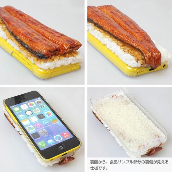 salmon case