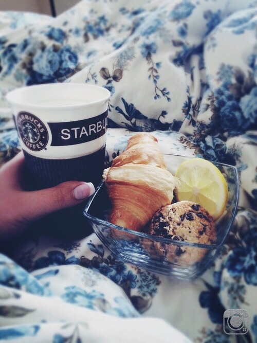 starbucks cafe cama