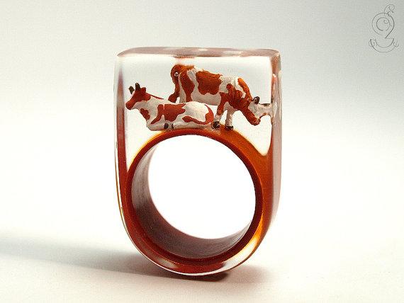 vacas anillo