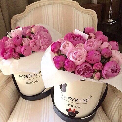 cubeta rosas