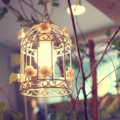 jaula-lampara