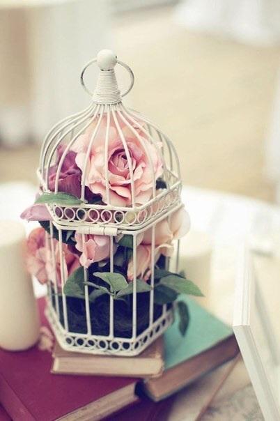 jaula rosas