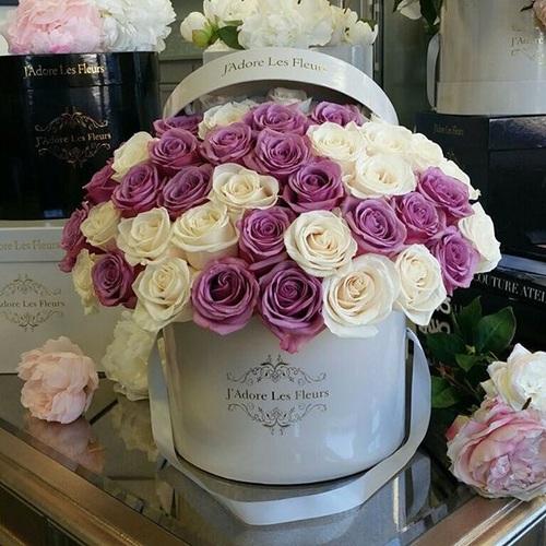 amo las flores