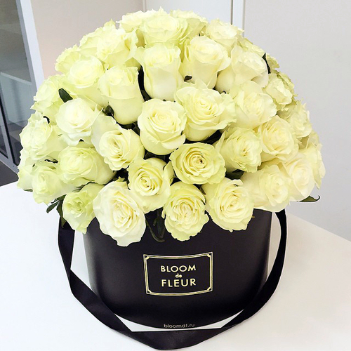 bloom fleur
