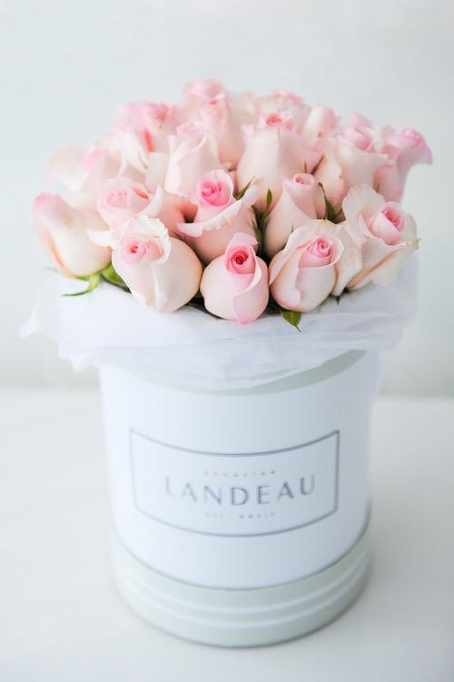landeau flores