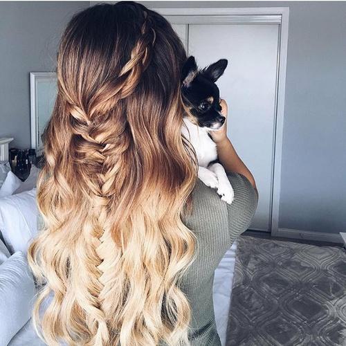 peinado chihuahua