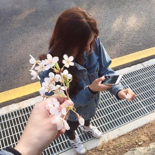 amor flor