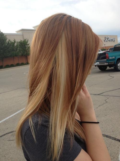 Dark Brown Hair With Blonde Underlayer