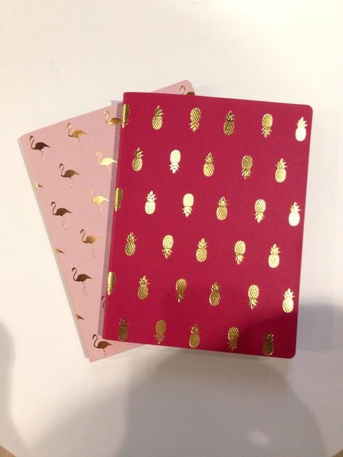 pina cuaderno