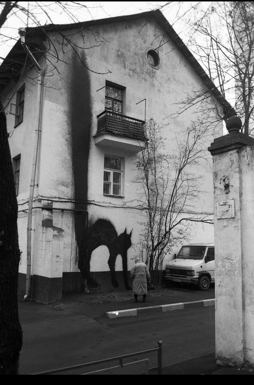 inspo grafiti