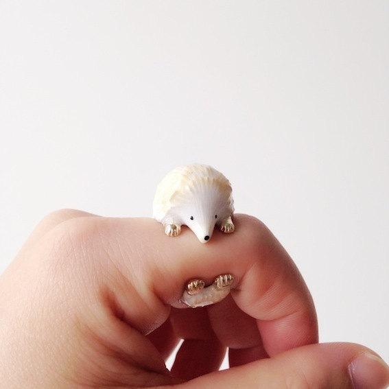 erizo anillo