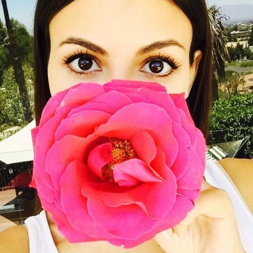 flor oliendo