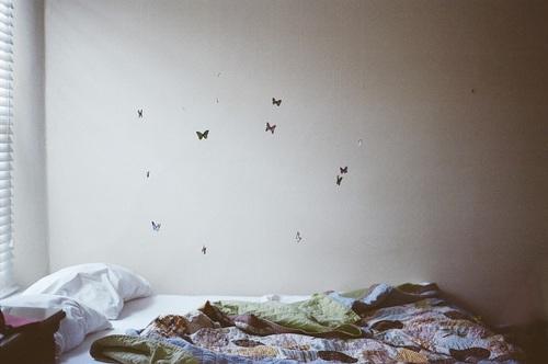 mariposas colgando