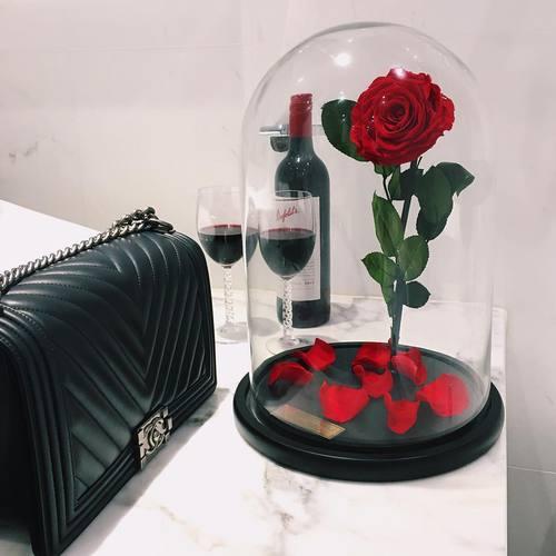 rosa bella cupula