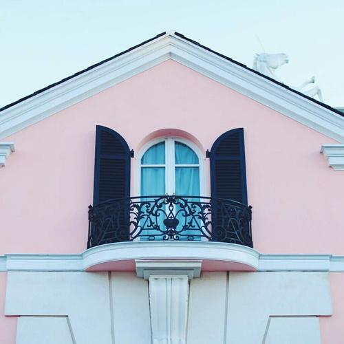 rosa blanco y negro casa