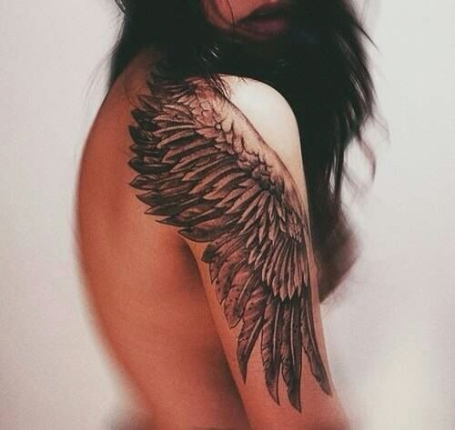 wing shoulder