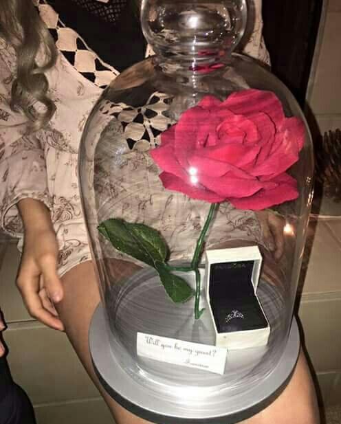 rosa-frasco