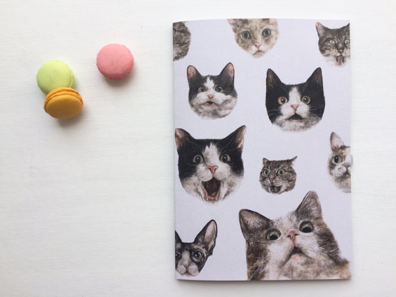 cat-notebook