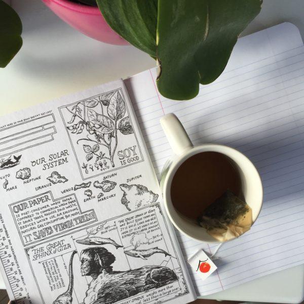 diarios-y-tareas