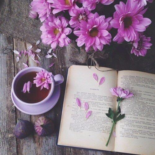 flores-libro