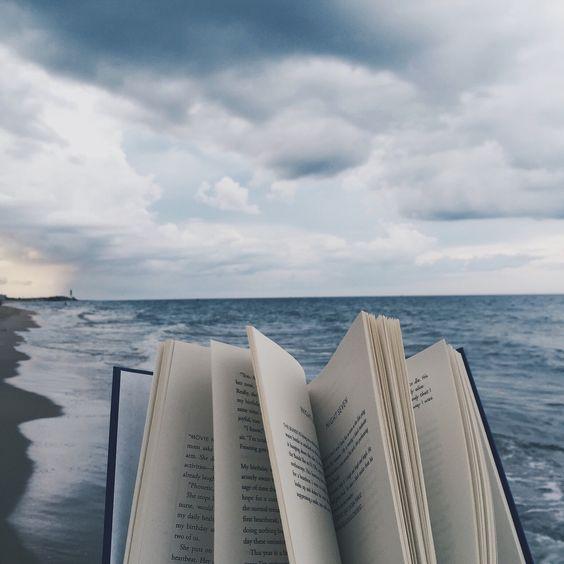playa-libro